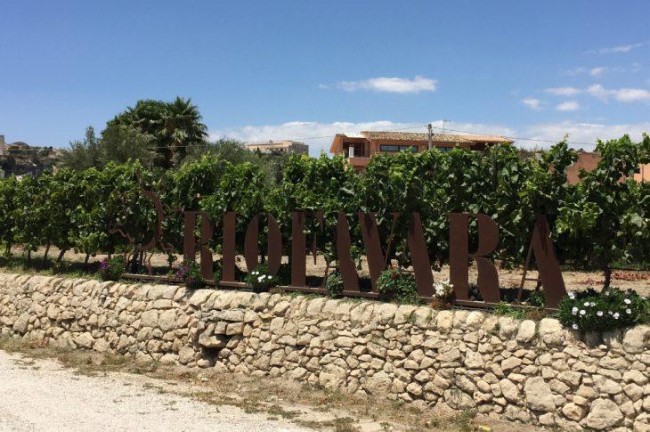 Azienda agricola Riofavara